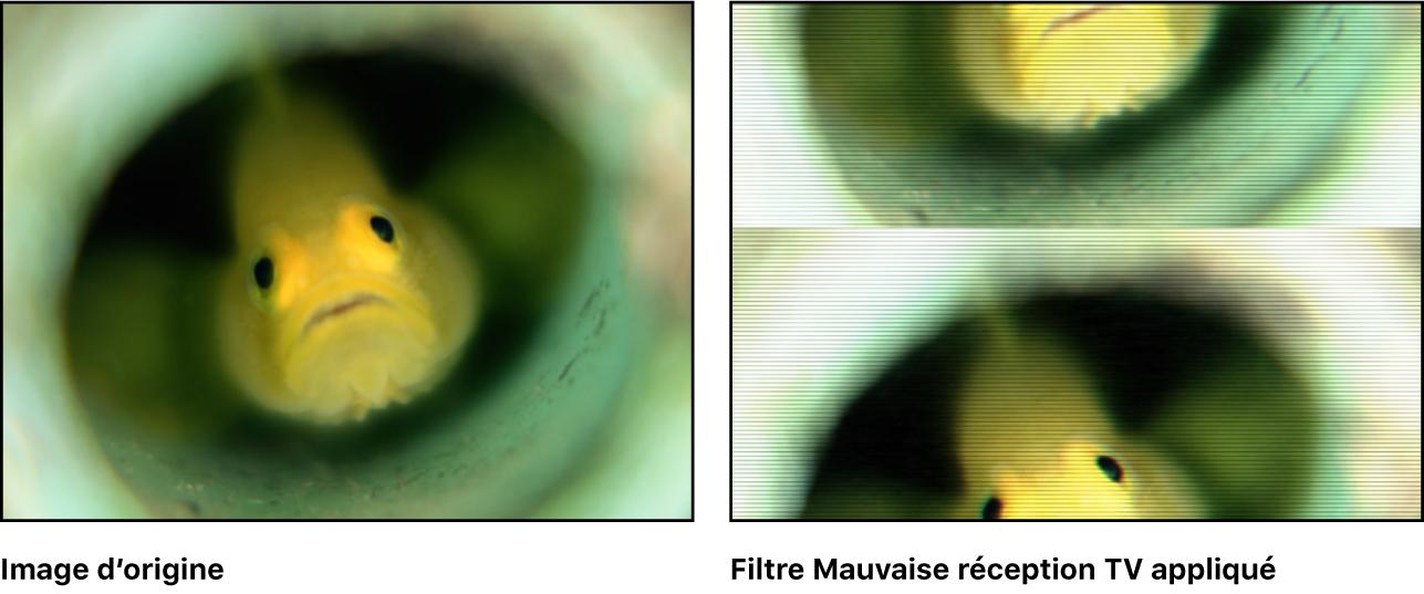 Canevas affichant l'effet du filtre Mauvais téléviseur