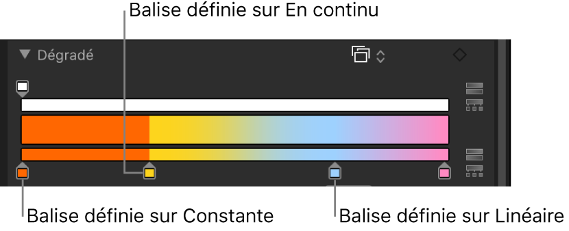 Éditeur de dégradé affichant les balises de couleur, distribuées d'après la méthode d'interpolation Constante