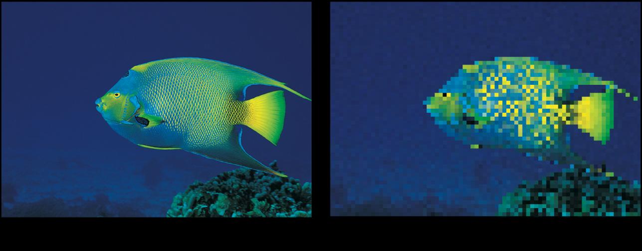 Canevas affichant l'effet du filtre Pixeliser