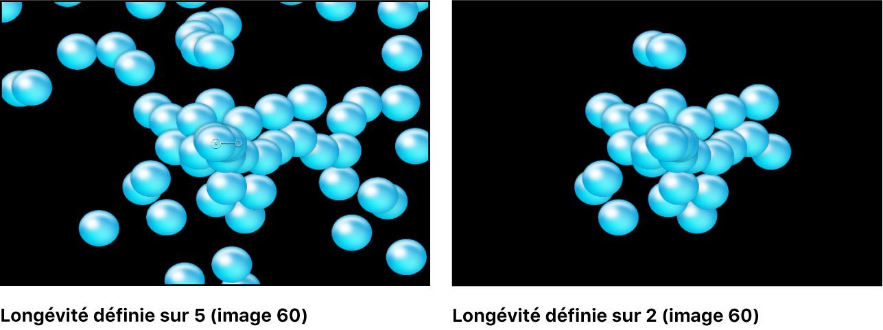 Canevas affichant l'effet du paramètre Longévité