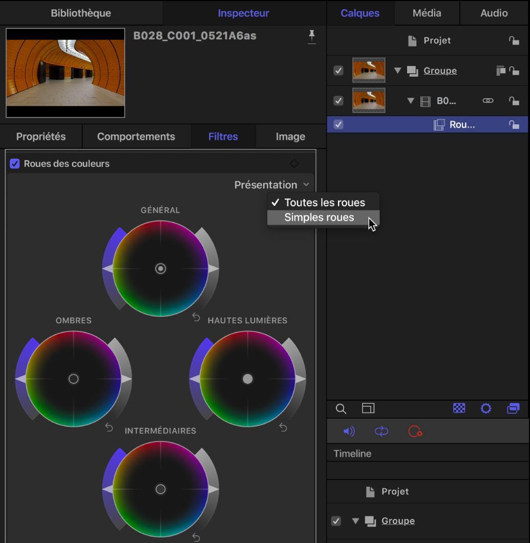Commandes des roues des couleurs dans l'inspecteur de filtres affichant le menu local Présentation