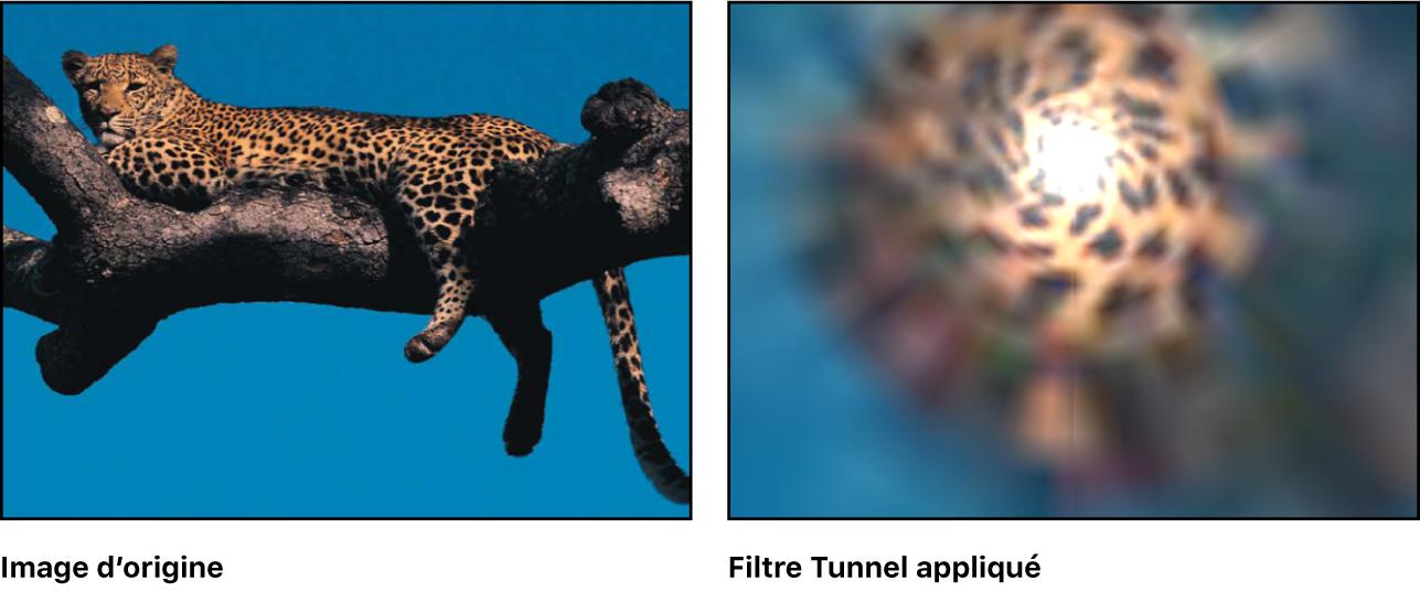 Canevas affichant l'effet du filtre Tunnel