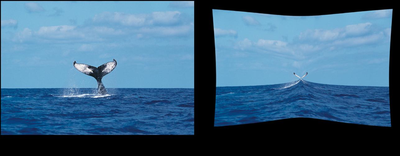Canevas affichant l'effet du filtre Trou noir