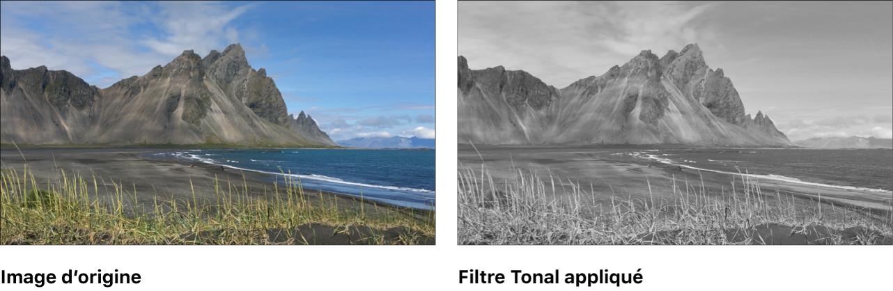 Canevas affichant l'effet du filtre Tonal