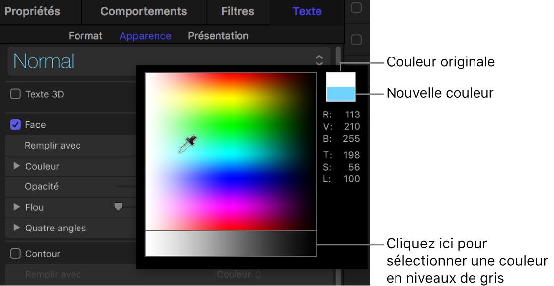 Palette des couleurs affichant les échantillons de couleurs d'origine et nouveau, ainsi que la zone de sélection de couleur en niveaux de gris