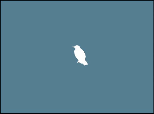 Canevas affichant une image à l'arrière-plan et une forme représentant un oiseau blanc