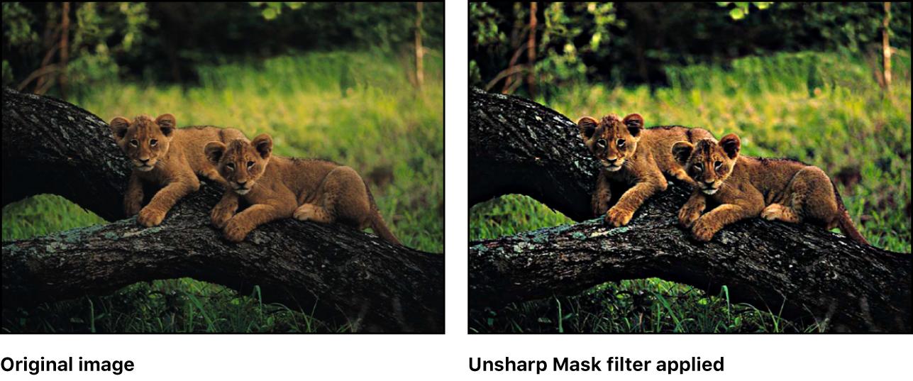 「アンシャープマスク」フィルタの効果を示すキャンバス