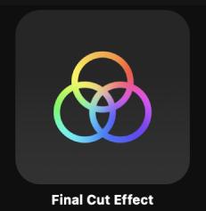 """项目浏览器中的""""Final Cut 效果""""图标"""
