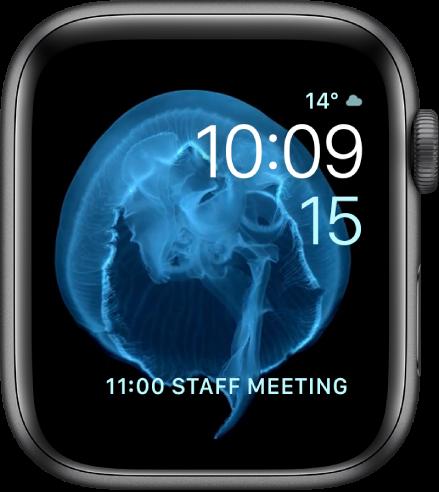 """Das Zifferblatt """"Bewegung"""" zeigt eine Qualle. Du kannst auswählen, welches sich bewegende Objekt angezeigt wird und mehrere Komplikationen hinzufügen."""