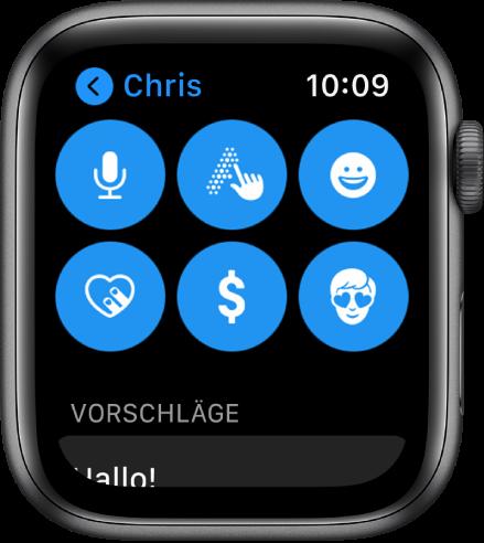 """Eine Anzeige in der App """"Nachrichten"""" mit der Taste """"Apple Pay"""" oben sowie den Tasten """"Diktieren"""", """"Kritzeln"""", """"Emoji"""", """"Digital Touch"""" und """"Memoji""""."""