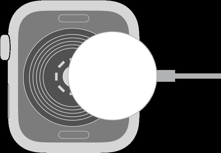 L'extrémité concave du câble de recharge magnétique de l'AppleWatch s'aimante au dos de l'AppleWatch.