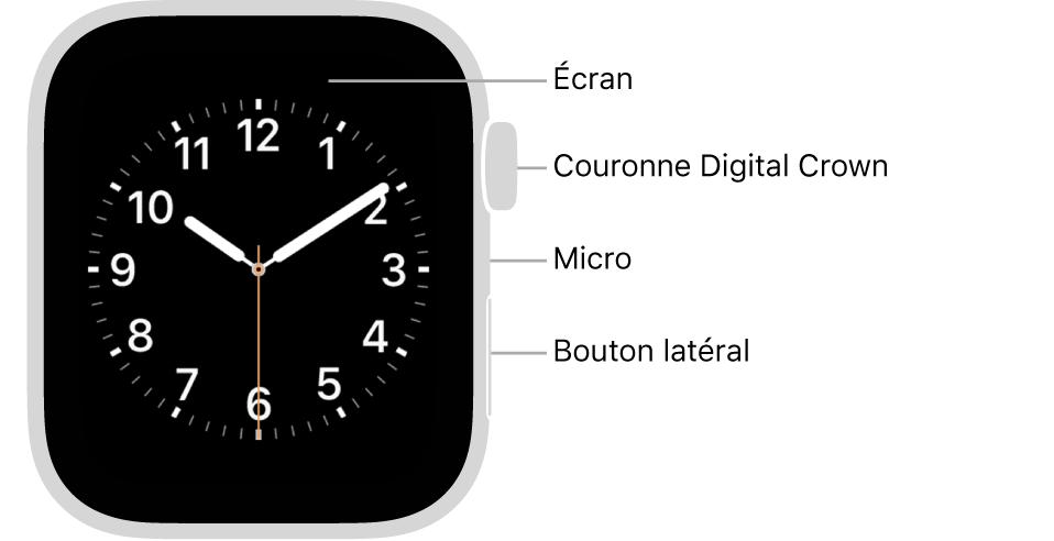 L'avant de l'AppleWatch Series6, avec l'écran affichant le cadran, et sur le côté de la montre, de haut en bas, la DigitalCrown, le micro et le bouton latéral.