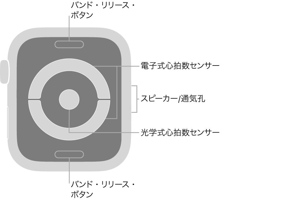 AppleWatch Series4およびAppleWatch Series5の背面で、上下にバンド・リリース・ボタン、中央に電気式心拍数センサー、光学式心拍数センサー、側面にスピーカー/通気孔があります。