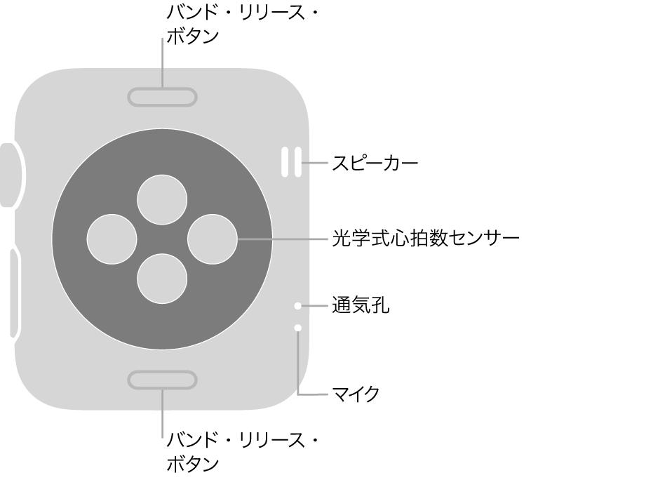 AppleWatch Series3の背面で、上下にバンド・リリース・ボタン、中央に光学式心拍数センサー、側面付近には上から順にスピーカー/通気孔およびマイクがあります。