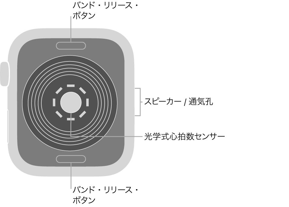 AppleWatchSEの背面で、上下にバンド・リリース・ボタン、中央に光学式心拍数センサー、側面にはスピーカー/通気孔があります。