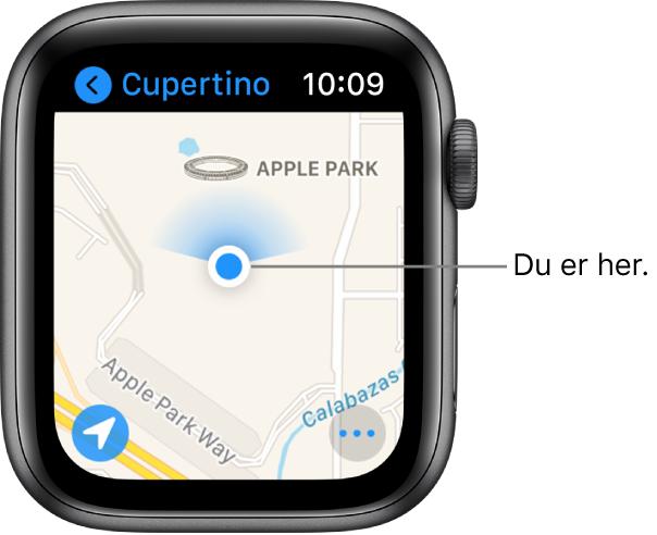 Kart-appen som viser et kart. Posisjonen din vises som en blå prikk på kartet. Det vises en blå vifte over posisjonsprikken, som betyr at klokken peker mot nord.