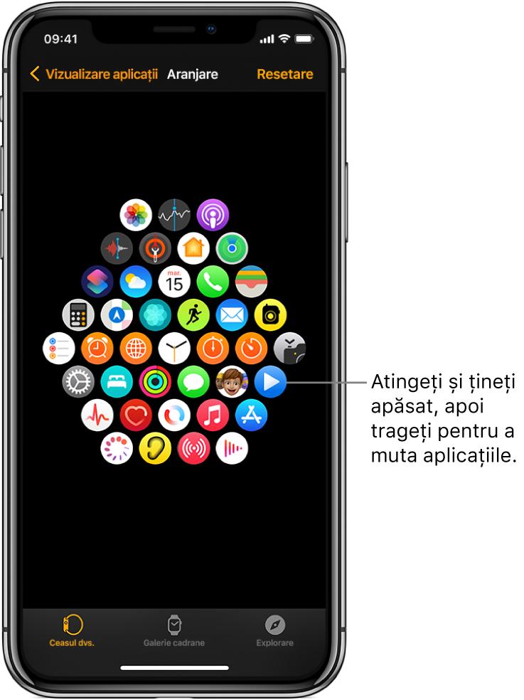 Ecranul Aranjare în aplicația Apple Watch, afișând o grilă de pictograme.
