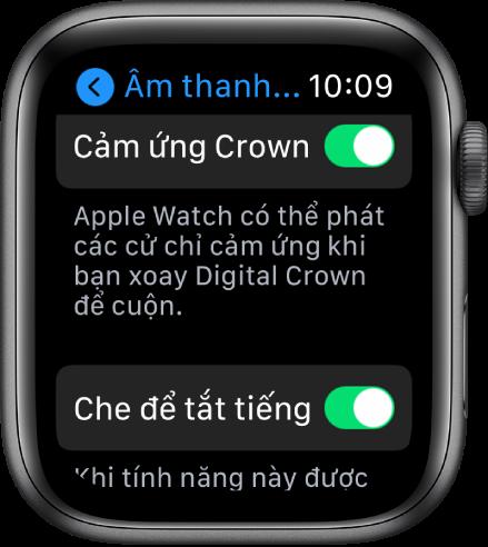 Điều chỉnh độ sáng, kích cỡ văn bản, âm thanh và cảm ứng trên Apple Watch -  Apple Hỗ trợ