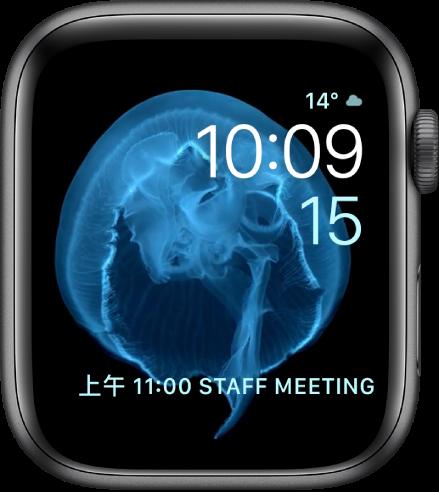 「動態」錶面顯示水母。你可以選擇動態的物件,並加入數個複雜功能。