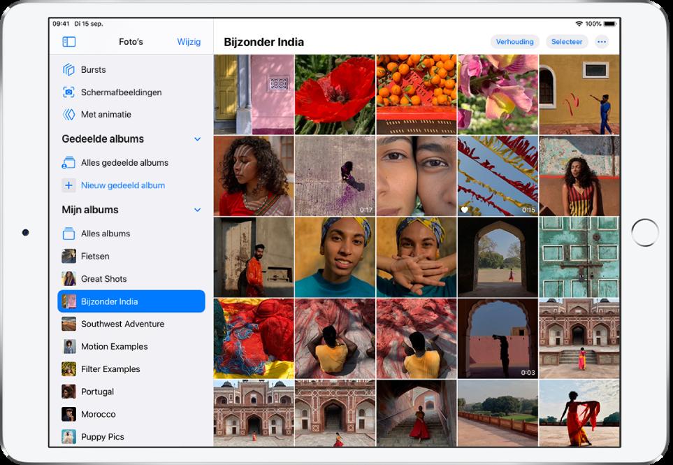 Aan de linkerkant van het scherm is de navigatiekolom van Foto's geopend. Onder de kop 'Mijn albums' is het album 'Amazing India' geselecteerd. De rest van het iPad-scherm is gevuld met tegels met foto's en video's van het Amazing India-album.
