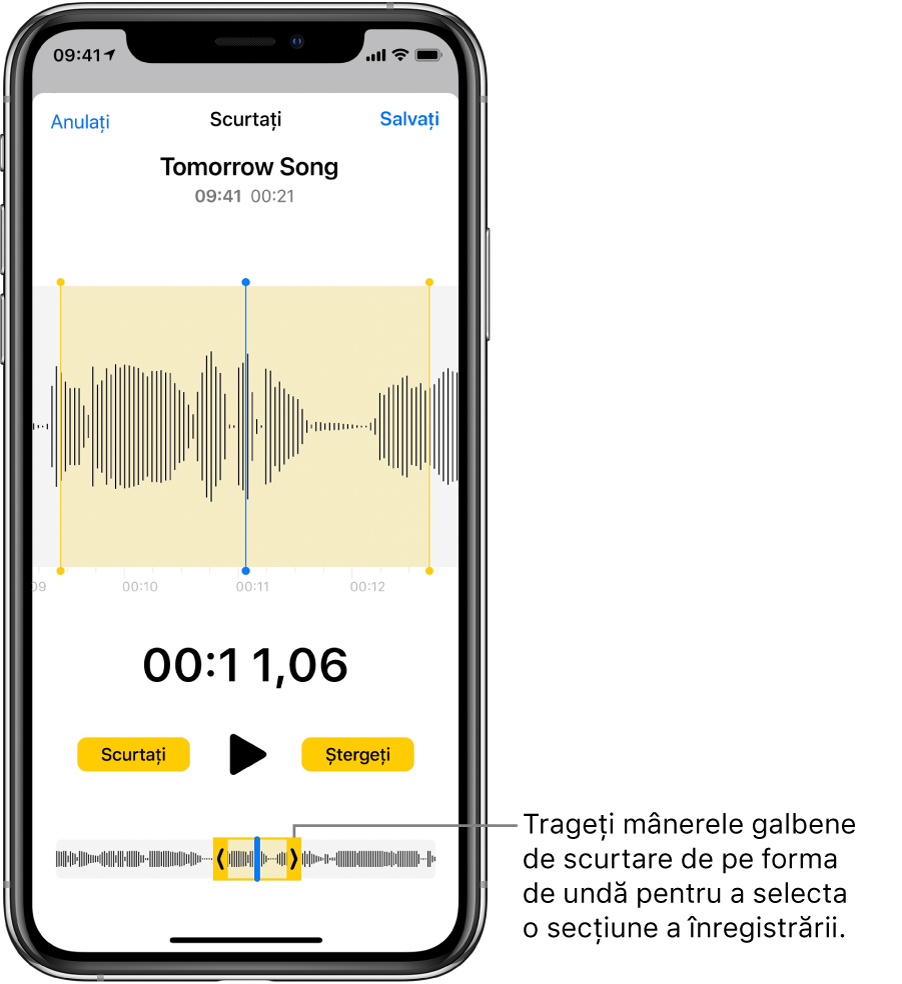 Editarea sau ștergerea unei înregistrări în Reportofon pe iPad