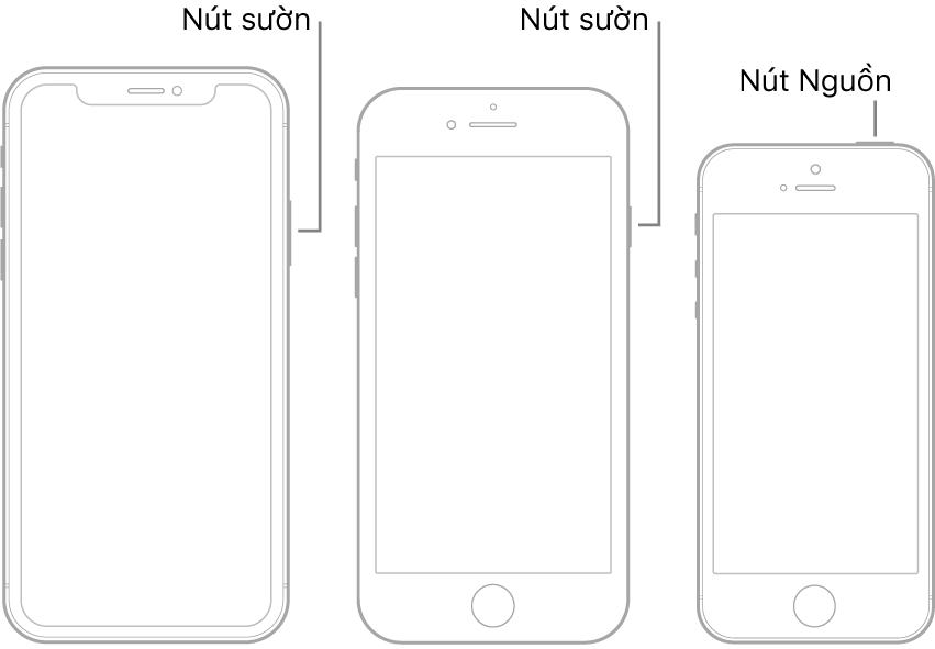 Hình minh họa đang hiển thị các vị trí của các nút Nguồn và nút sườn trên iPhone.