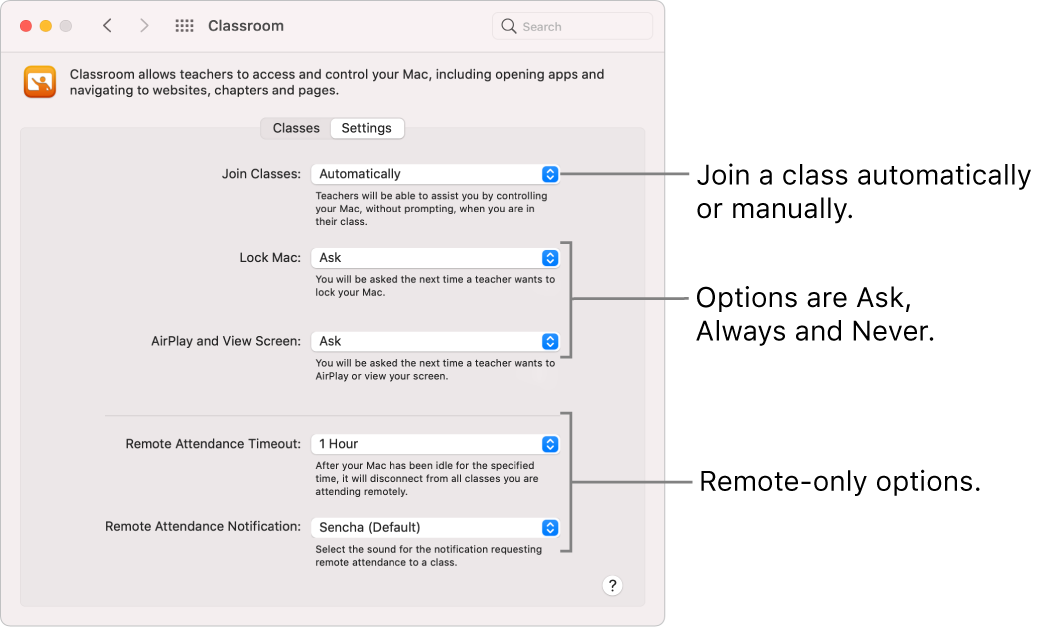Students' view of Classroom permissions that are available to them.