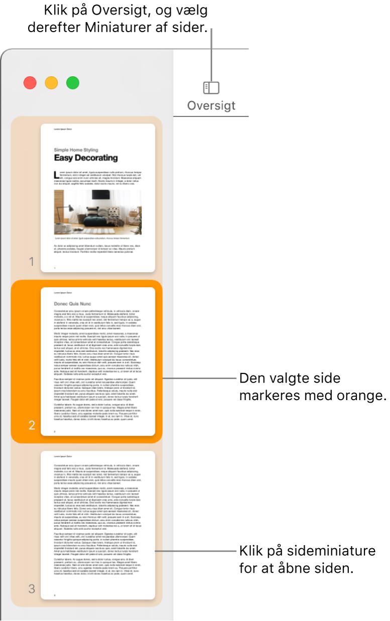 Indholdsoversigten i venstre side af Pages-vinduet med oversigten Miniaturer af sider åben og en valgt side markeret med mørk orange.