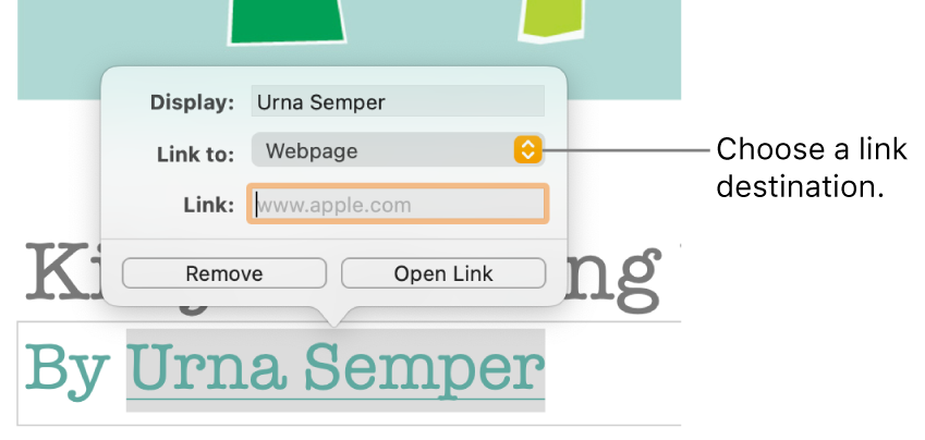 """The link editor controls with a Display field, """"Link to"""" pop-up menu (set to Webpage), and Link field. The Remove button and Open Link button are at the bottom of the controls."""
