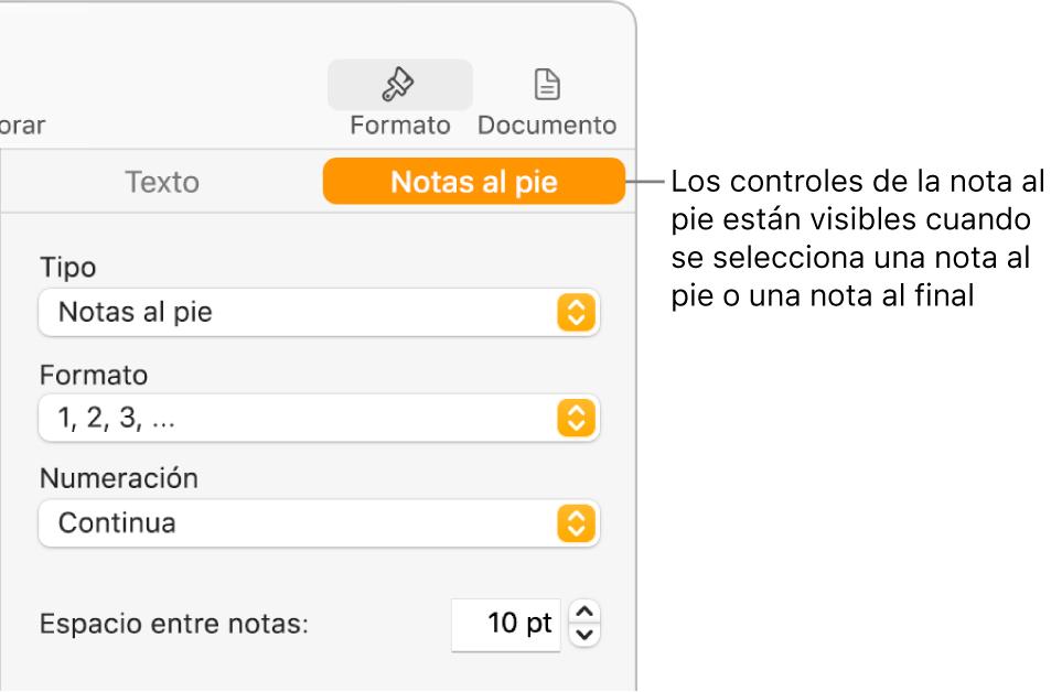 """El panel """"Notas al pie"""" con menús desplegables para Tipo, Formato, Numeración y espacio entre notas."""