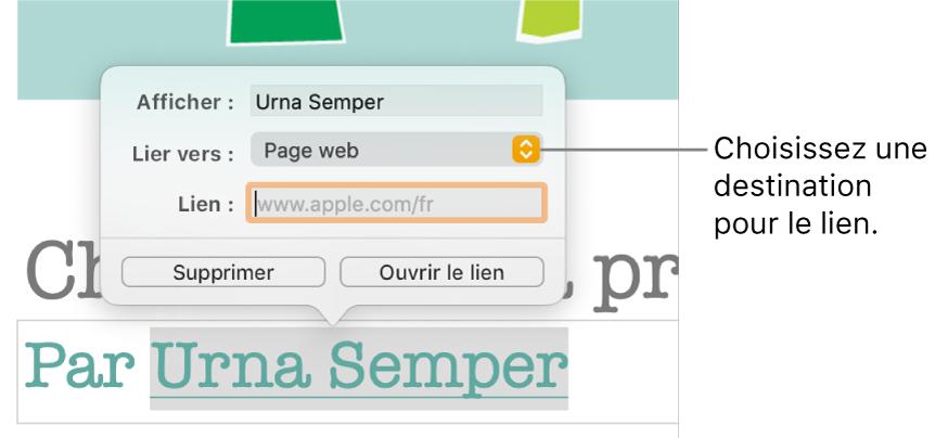 L'éditeur de liens avec le champ Affichage, le menu local «Lien vers» (défini sur «Page web») et le champ Lien. Les boutons Supprimer et «Ouvrir le lien» se trouvent au bas des commandes.