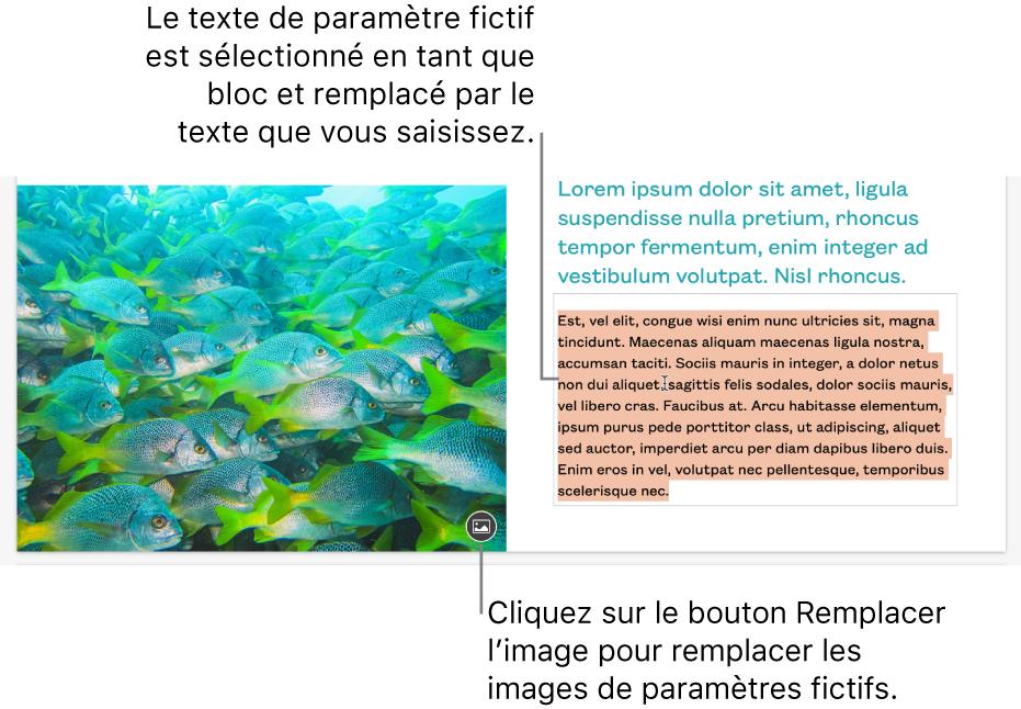 Texte et images de paramètre fictif.