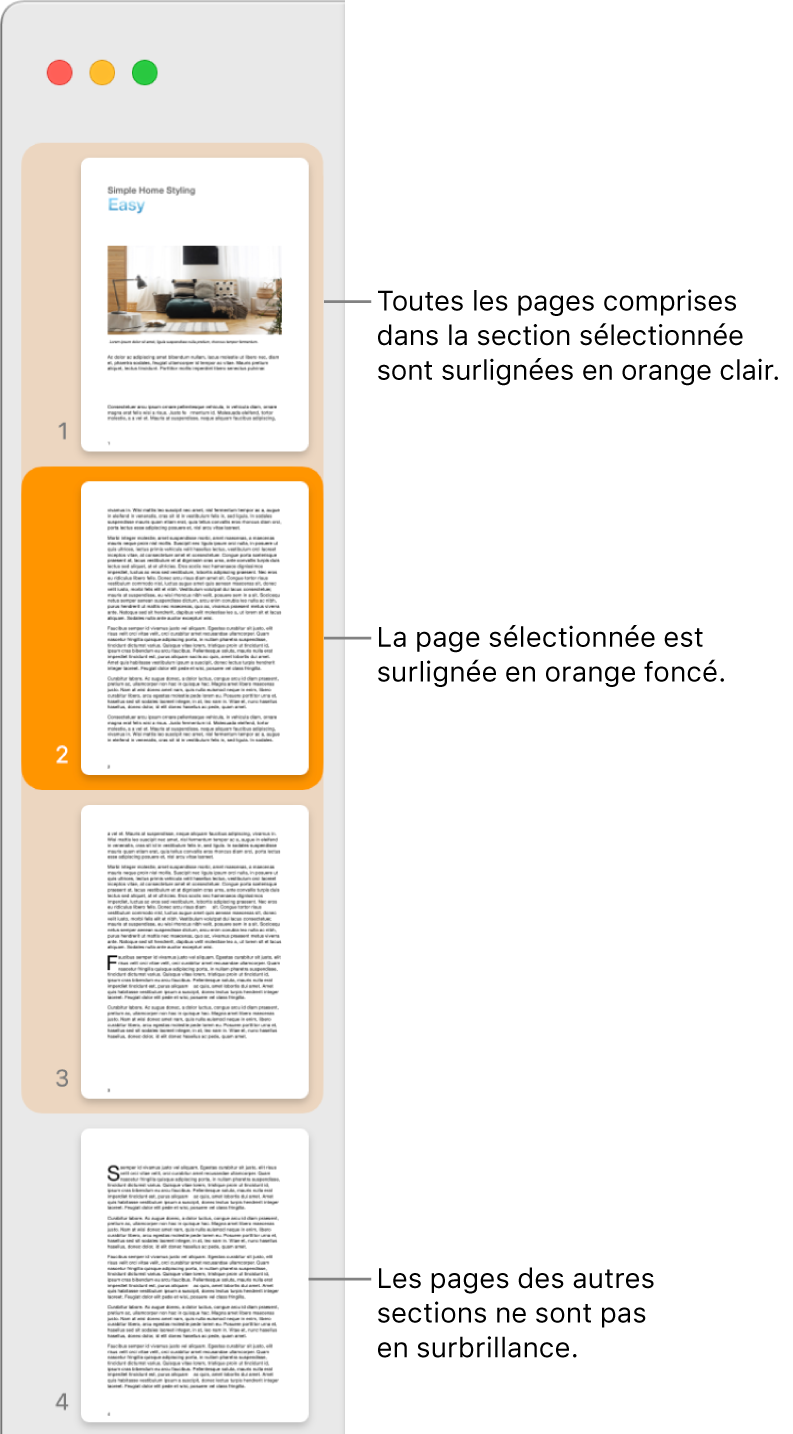 La Présentation des pages sous forme de vignettes dans la barre latérale avec la page sélectionnée surlignée en orange foncé et l'ensemble des pages de la section sélectionnée surligné en orange clair.