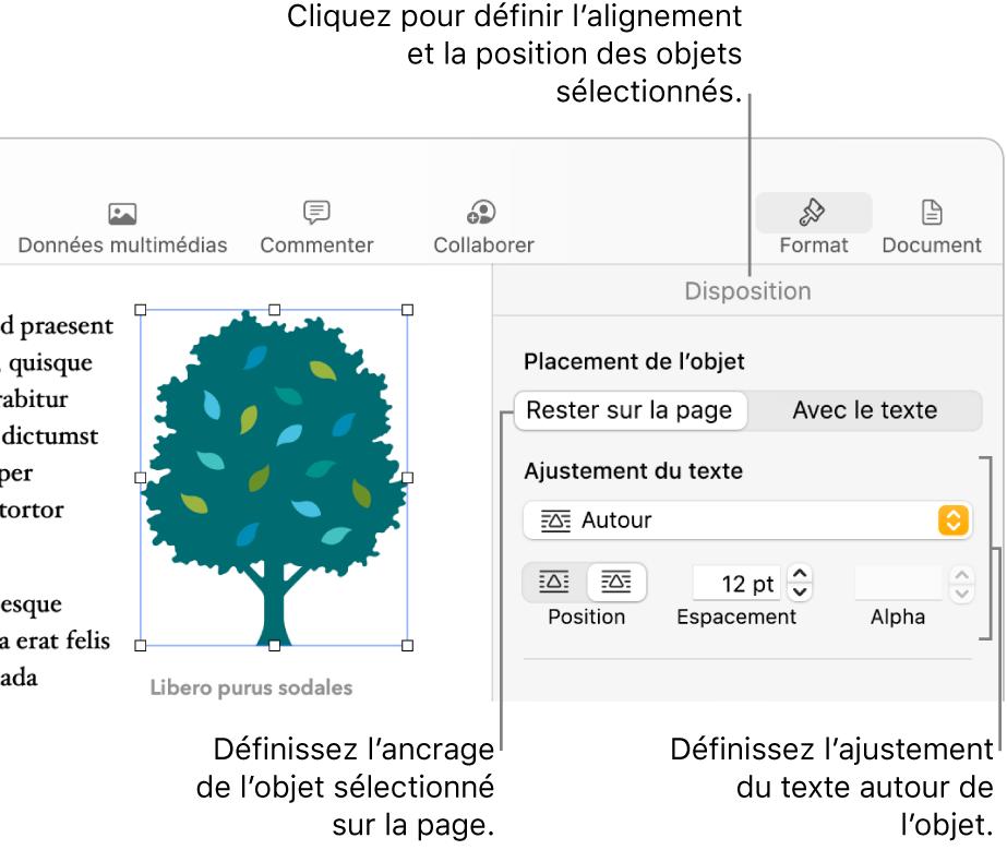 Le menu Format avec la barre latérale Disposition affichée. Les réglages «Placement objet» sont en haut de la barre latérale Disposition, avec les réglages «Ajustement du texte» en dessous.