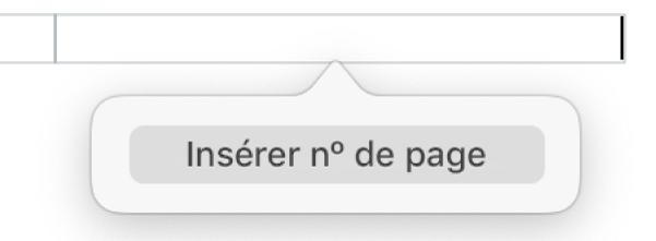 Le bouton «Insérer nº de page» en dessous de l'en-tête.