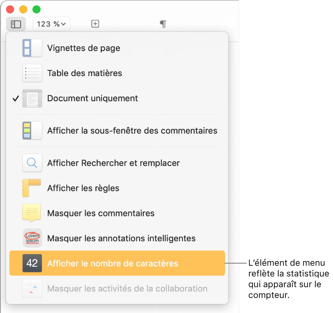 Le menu Présentation ouvert avec l'option «Afficher le nombre de caractères» vers le bas.