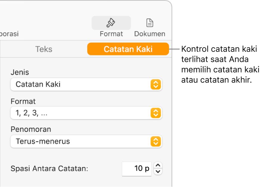 Panel Catatan Kaki menampilkan menu pop-up untuk Jenis, Format, Penomoran, dan spasi di antara catatan.