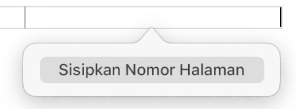 Tombol Sisipkan Nomor Halaman di bawah header.