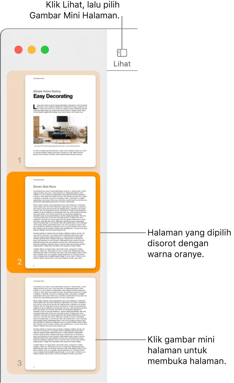 Bar samping di sisi kiri jendela Pages dengan tampilan Gambar Mini Halaman dan halaman yang dipilih disorot dalam oranye tua.