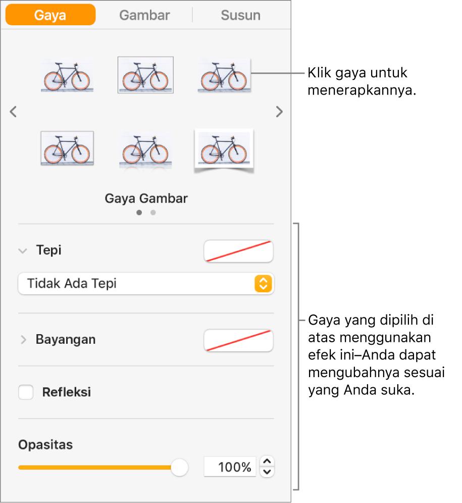 Tab Gaya pada bar samping Format menampilkan pilihan gaya objek.