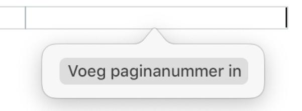 De knop 'Voeg paginanummer in' onder de koptekst.