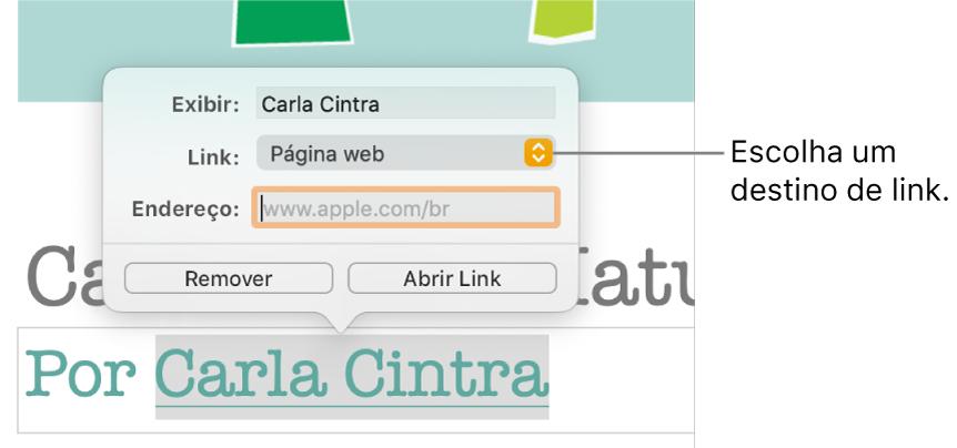 Controles do editor de links com o campo Exibir, o menu local Link (definido como Página web) e o campo Link. O botão Remover e o botão Abrir Link estão na parte inferior dos controles.