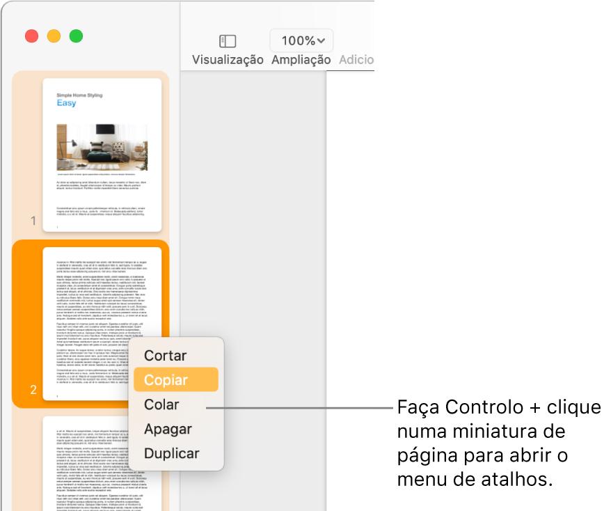 Vista de miniaturas das páginas com uma miniatura selecionada e o menu de atalhos aberto.