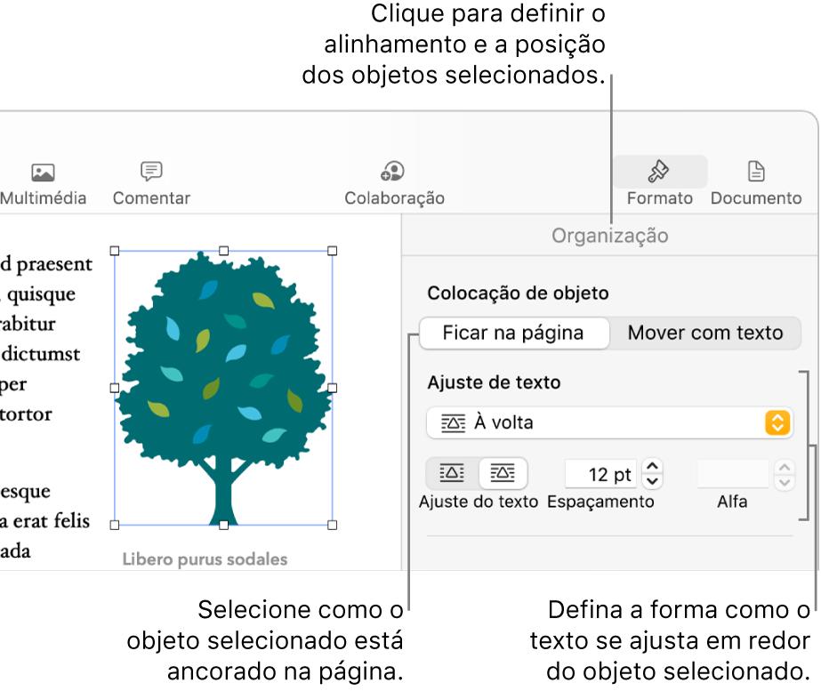 """O menu Formatação com a barra lateral Organização visível. As definições """"Colocação de objeto"""" estão na parte superior da barra lateral Organização, com as definições """"Ajuste de texto"""" por baixo."""