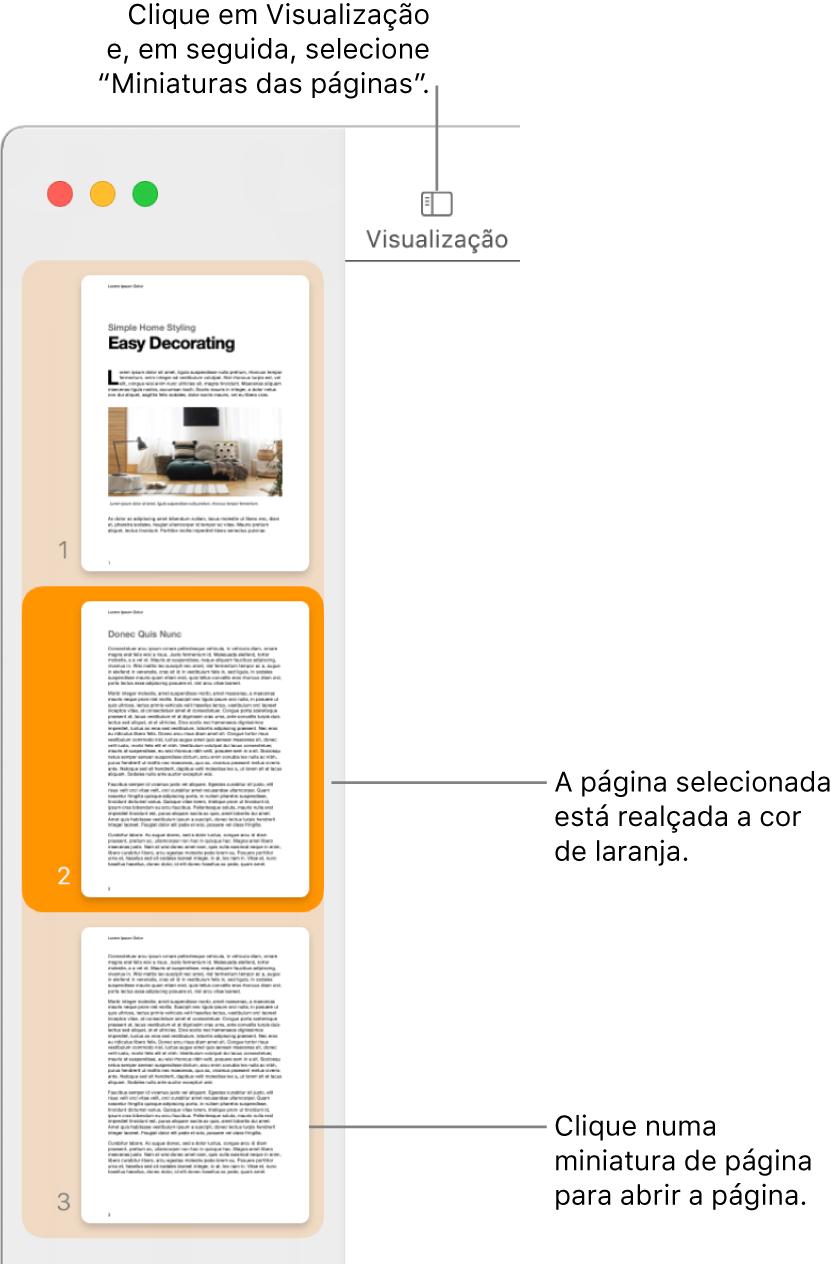 A barra lateral no lado esquerdo da janela do Pages com a vista de miniaturas das páginas aberta e uma página selecionada destacada a cor de laranja escuro.