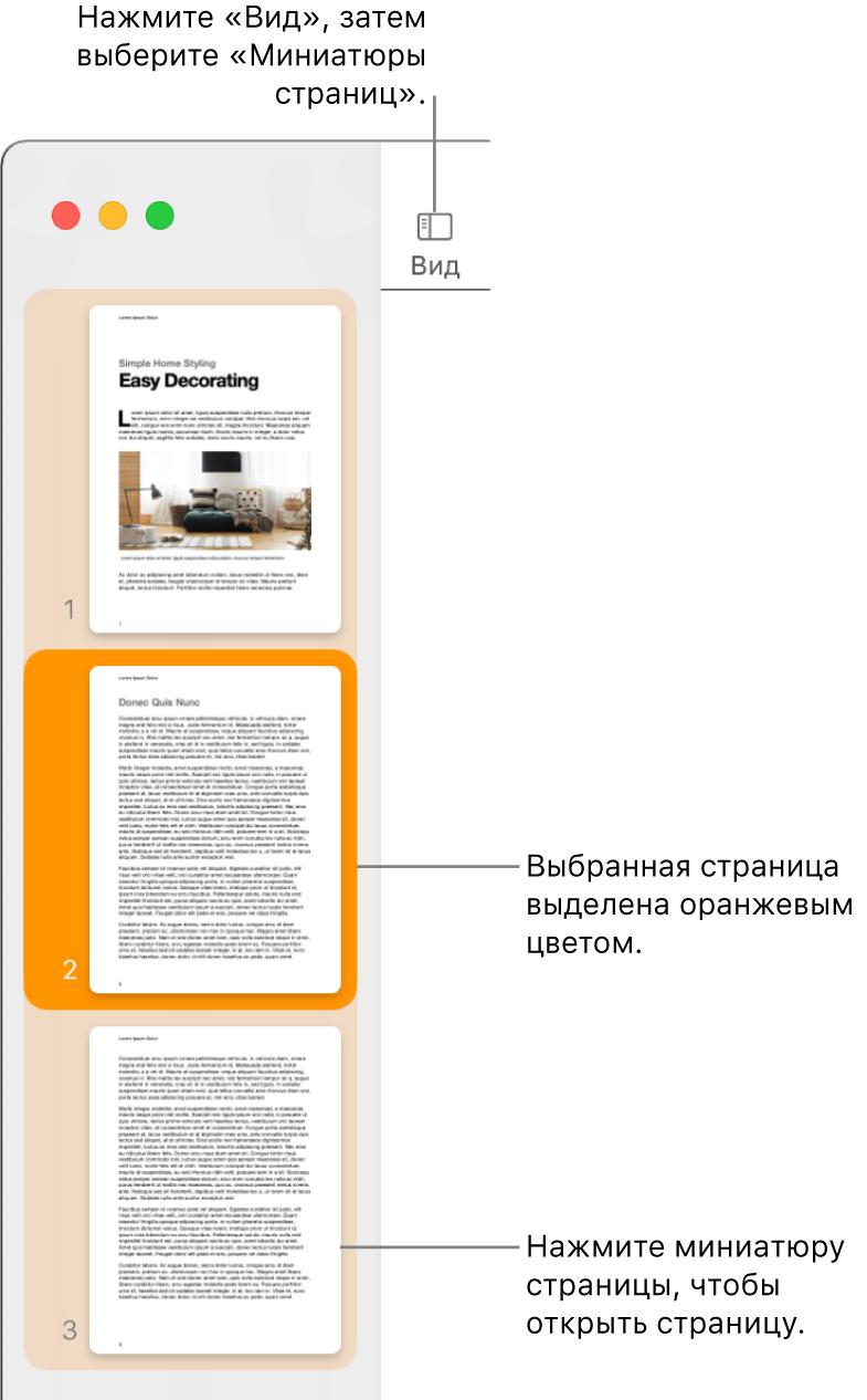 Боковое меню влевой части окна Pages. Открыта панель «Миниатюры страниц», выбранная страница выделена оранжевым цветом.