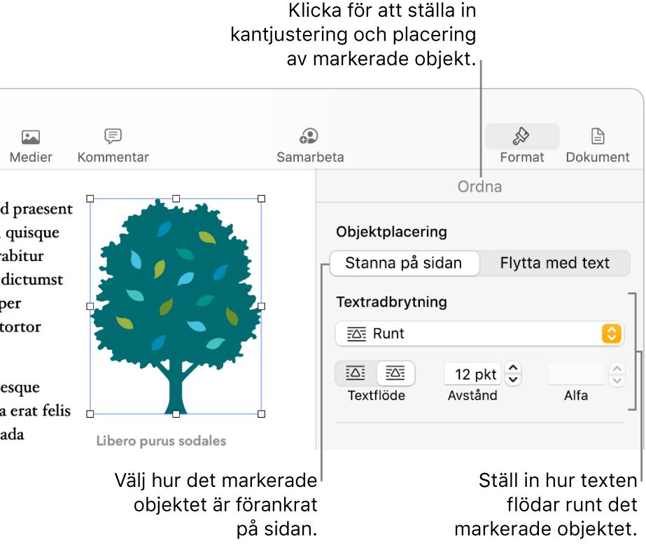 Formatmenyn med sidofältet Ordna synligt. Inställningarna för objektplacering är högst upp i sidofältet Ordna med inställningarna för textbrytning nedanför.