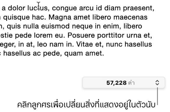 เมนูจำนวนคำแสดงจำนวนของคำในเอกสาร