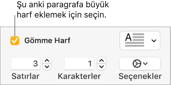 İlki Büyük Harf onay kutusu seçilidir ve sağında bir açılır menü görünür; satır yüksekliğini, karakter sayısını ve diğer seçenekleri ayarlama denetimleri ise altında görünür.