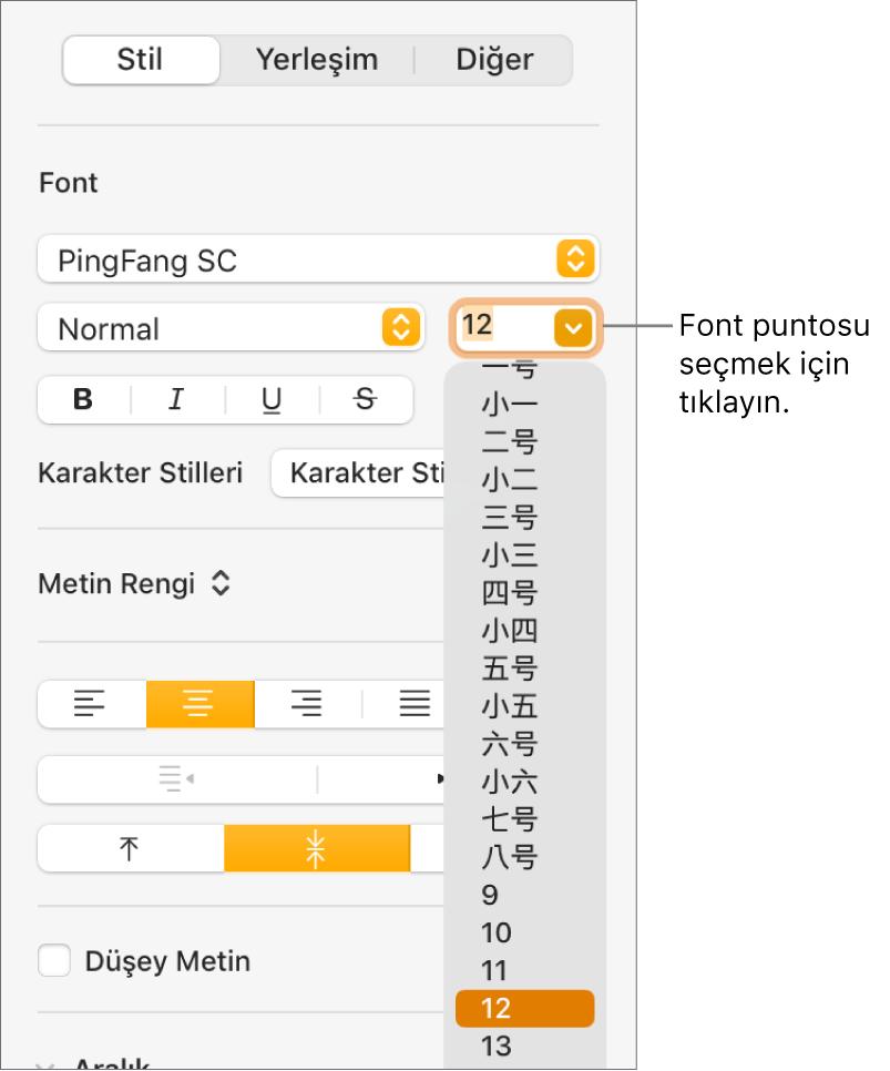 Font puntosu menüsü açık olarak Biçim kenar çubuğunun Stil bölümü. Çin ana karası hükümeti standardındaki font puntoları menünün en üst kısmında, diğer puntolar ise bunun altında görünür.